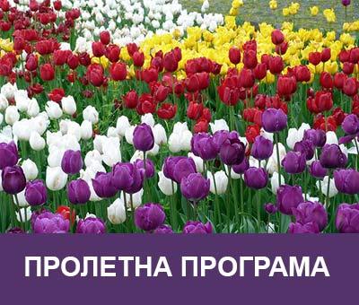 Пролетни програми